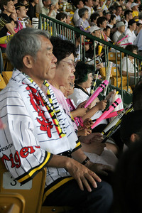 Tiger Fans come well dressed in team clothes, and bring Rally Bats to participate in the constant cheering, singing and chanting.  They have a different song for each Tiger coming to bat, and lots of other cheers as well.  Japanese baseball is a very social event for the entire crowd!