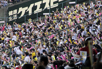 The pink, yellow and white colors are the Rally Bats.  Most everybody had them (except us!), and they were used a lot to beat out chants and songs sung by the whole crowd.