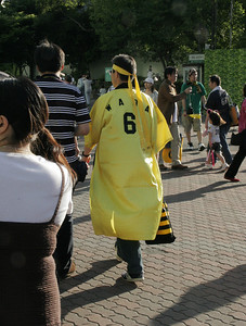 Fans of Osaka's baseball team are very enthusiastic.