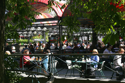 Lunch in Oslo's central park.