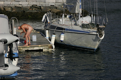 Morning ablutions in the harbor in Balestrand.