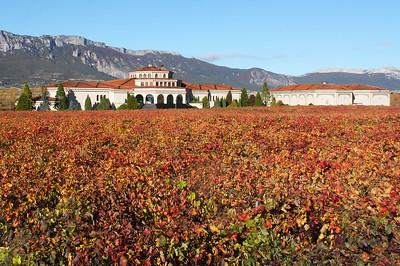 Bodegas Campillo ... see my Rioja wine gallery.