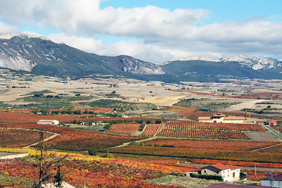 View from La Guardia, Rioja.