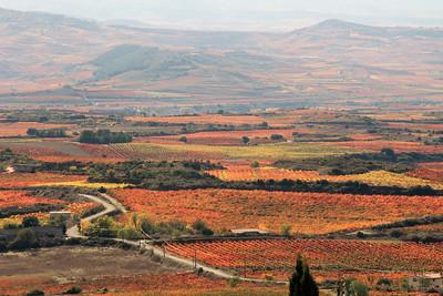 Rioja.