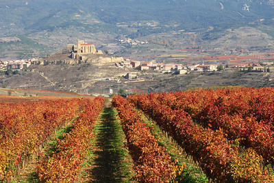 The village of San Vicente de la Sonsierra, as seen from the parking lot of the Rioja Museum of Wine Culture.