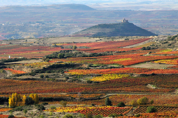 Fall Color in Northern Spain