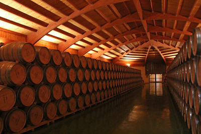 Campillo's barrel room.  This winery was incredibly neat, clean and spotless.
