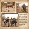 Meeting a Crash of Rhinoceros