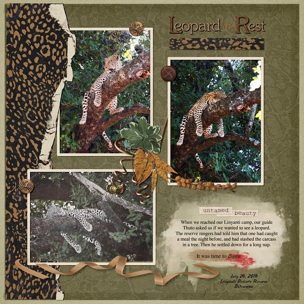 Leopard Rest