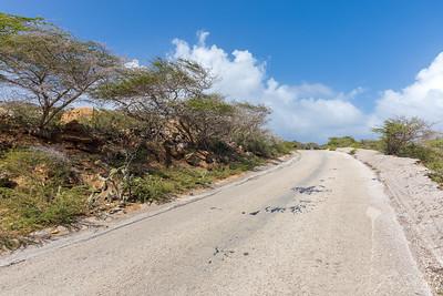 Curaçao Landscape