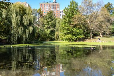 Central Park, Manhattan, New York, NY