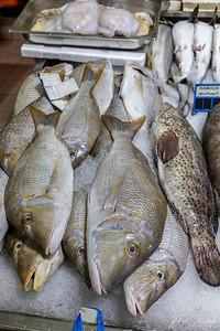 Al Mina Fish Market