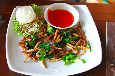 A DELICOIUS PLATE FULL OF DEEP FRIED BAMBOO WORMS.  STEVE ATE MOST OF THEM BUT I HAD ABOUT A DOZEN.  NO CREAMY CENTERS.  JUST CRISP NUTTY FLAVOR!!