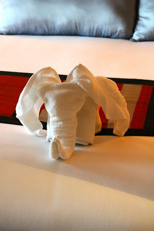 The towel origami elephant in Eks room