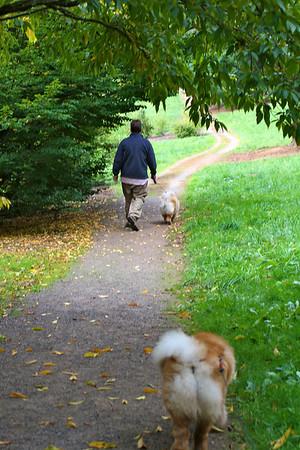 A WALK IN WASHINGTON PARK, 10-28-11