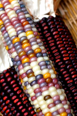 I bought some Indian corn last week to photograph....OOOOH they look like beads!
