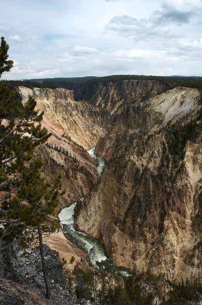 The Grand Canyon of Yellowstone....aptly named.