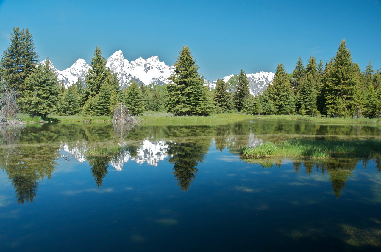 Schwabacher Landing in Grand Tetons National Park.  A favorite spot of Ansel Adams.