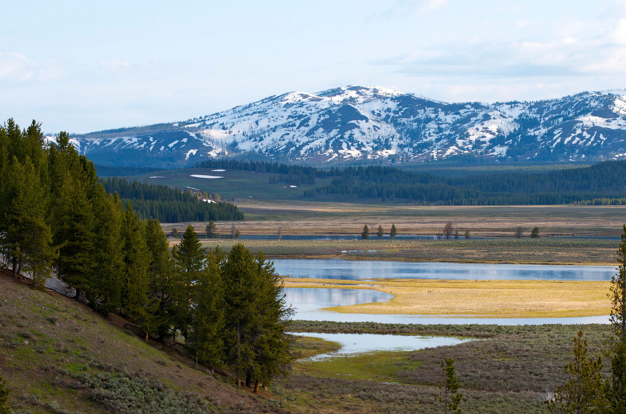 Hayden Valley, Yellowstone National Park.  A wolf pack is rumored to meet by this river....unfortunately we never saw them.