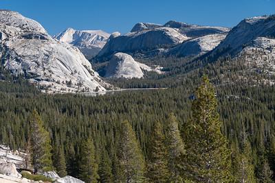 Tenya Lake, Yosemite, CA