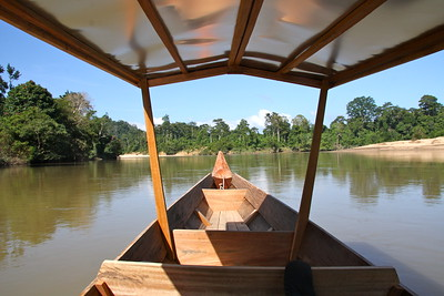 wooden longboat  zooming up the river thru the jungles with hardly a sign of civilization for hours