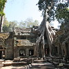 Ta Prohm temple where part of Tomb Raider was filmed