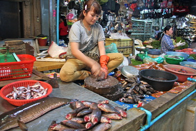 Fish market in Siem Reap Cambodia.. it was VERY smell any as you can see far from hygenic