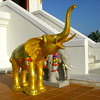 Golden elephant at a temple in Krabi Thailand
