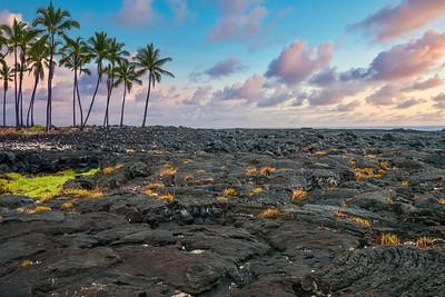 The black lava fields of Pu'uhonua, or the City of Refuge, at Pu'uhonua o Honaunau National Historical Park on the Big Island of Hawaii.