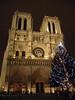 Cathedrale de Notre Dame at night, Ile de la Cite