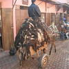 Donkey cart loaded with skins, Marrakesh