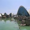 Oceanografic, Valencia - This aquarium is part of the modern Ciudad de las Artes y las Ciencias