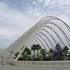 Garden - Ciudad de las Artes y las Ciencias, Valencia
