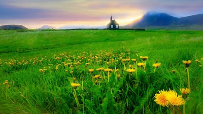 A beautiful landscape in Iceland, including the black church of Budir.