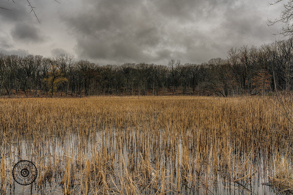 untitled (1 of 3)_HDR_1-2