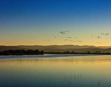 Serene Morning