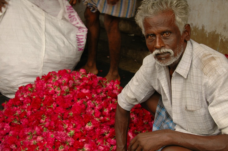 Indian Flower Vendor - Madurai, India