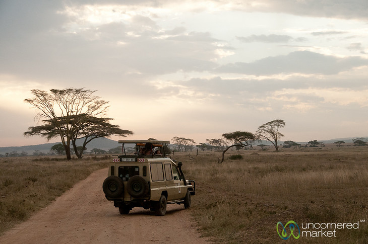 On Safari in the Serengeti - Tanzania