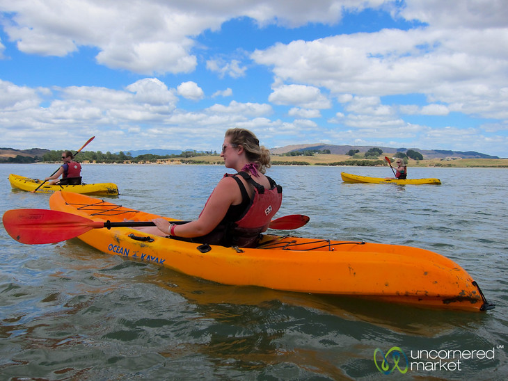 Kayaking on Whaingaroa Estuary near Raglan, New Zealand