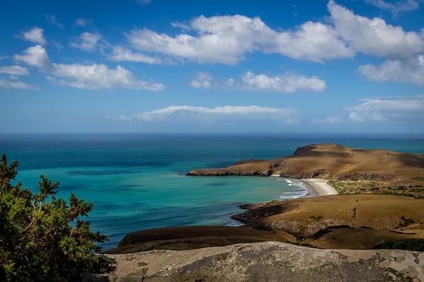 Otago Peninsula, Dunedin, NZ