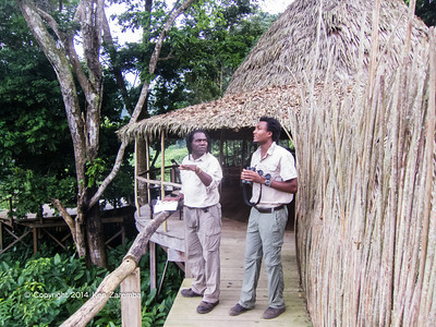 Scenes of the Congo Conservation Company Ngaga Camp, operated by Odzala Wilderness and a prime location for Western Lowland Gorilla trekking.