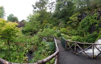Dunvegan Castle's Water Garden area