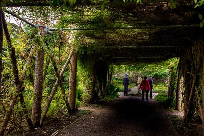 Dunvegan Castle Garden grounds