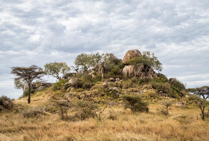 Masai Kopje