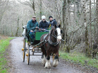2008 Killarney National Park