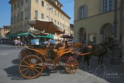 Travel;  Italy;  Tuscany;  Pisa;