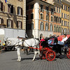 Horse drawn carriages are parked on Piazza Spagna waiting for costumers.