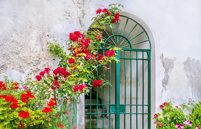 Vibrant roses, geraniums and pansies decorating an old, cracked building facade.