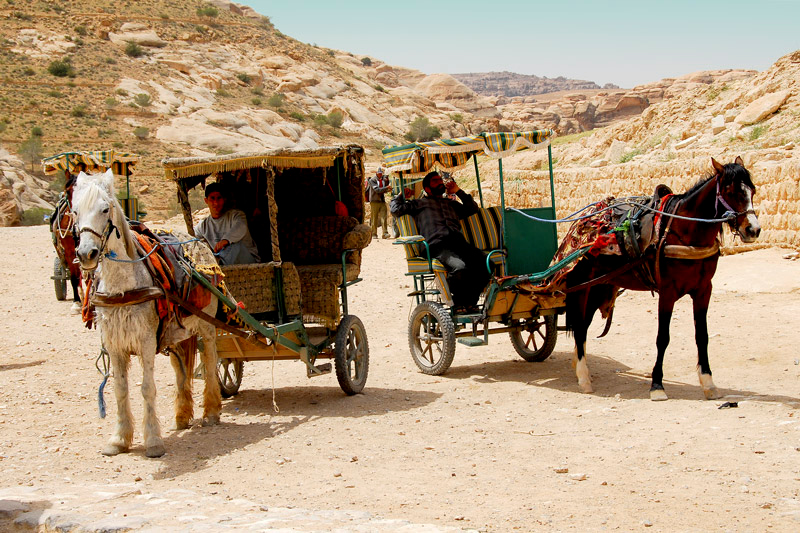 When visiting Petra, the bus stops at the point where there is a Tourist Center and bus parkings. From there you either rent a horse buggy as shown above for the approximately 6 kilometer distance to the Lost City of Petra.