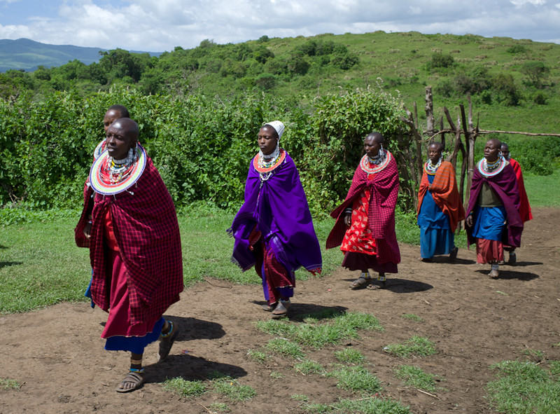 © Robert Will 2013<br /> <br /> The bulk of the work done in a boma is done by the women. Like the lions that are their kindred spirits, Masai men are content to let their wives (and mothers) support them.<br /> <br /> A Masai man may have as many wives as he can afford. Each one costs him one cow.